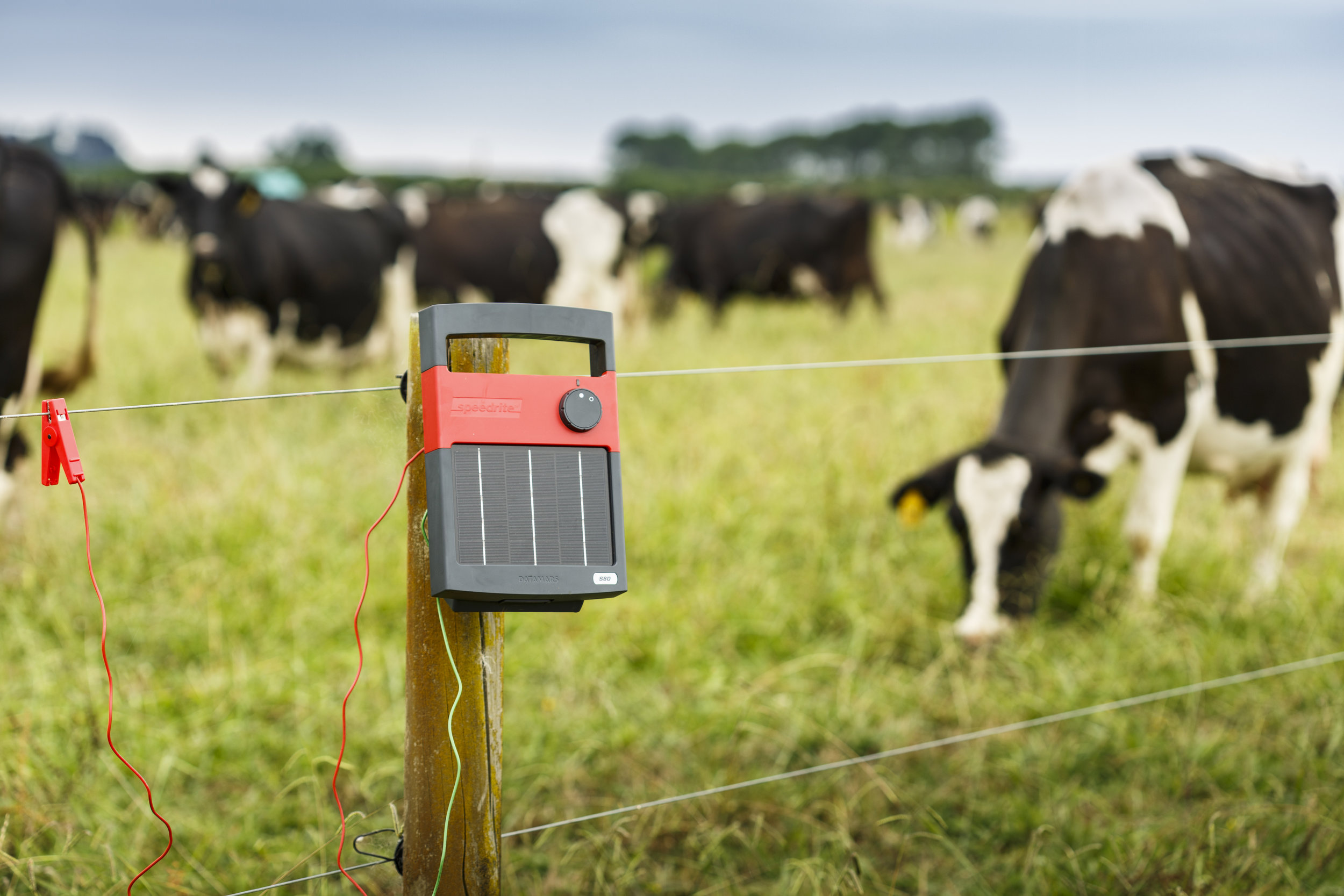 Каква е ролята на електропастирите в живота на фермерите